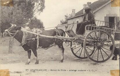 """/ CPA FRANCE 17 """"Chatelaillon, retour de pêche"""" / ATTELAGE"""