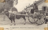 """17 Charente Maritime / CPA FRANCE 17 """"Chatelaillon, retour de pêche"""" / ATTELAGE"""