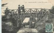 """17 Charente Maritime / CPA FRANCE 17 """"Chatelaillon, le parc, pont rustique"""""""
