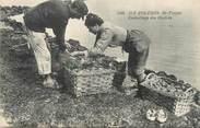 """17 Charente Maritime / CPA FRANCE 17 """"Ile d'Oléron,Saint Trojan, emballage d'huitres"""""""