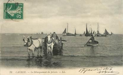 """/ CPA FRANCE 80 """"Cayeux sur Mer, le débarquement du poisson"""" / ATTELAGE"""