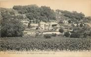 """37 Indre Et Loire CPA FRANCE 37 """"Vouvray, les vignes à la vallée Chartier"""""""
