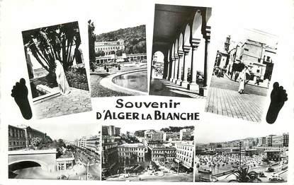 """CPSM ALGERIE """"Souvenir d'Alger la Blanche"""""""