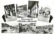 """Algerie CPSM ALGERIE """"Souvenir d'Alger la Blanche"""""""