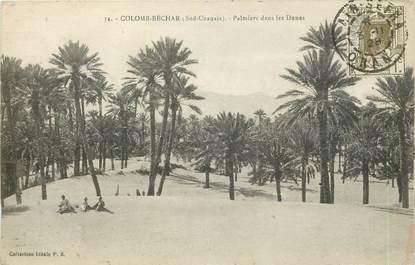 """CPA ALGERIE  """"Colomb Béchar, palmiers dans les dunes"""""""