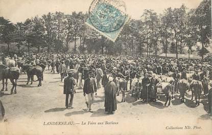 """CPA FRANCE 29 """"Landerneau, la Foire aux Bestiaux"""""""