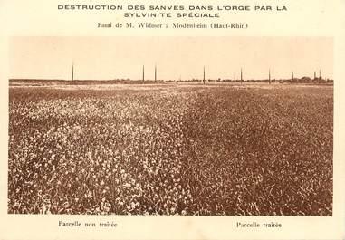 """/ CPSM FRANCE 68 """"Modenheim, destruction des Sanves dans l'orge par la Sylvinite spéciale"""""""