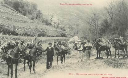 """CPA FRANCE 66 """"Muletiers transportant du bois"""""""