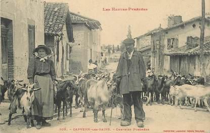"CPA FRANCE 65 ""Capvern les Bains, chevrier pyrénéen"""