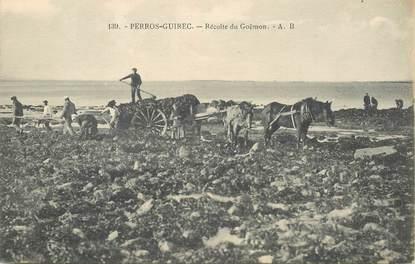 """CPA  FRANCE 22 """"Perros Guirec, récolte du Goëmon"""""""