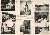 """72 Sarthe / CPSM FRANCE 72 """"Beaumont la Chartre, vue d'ensemble"""""""
