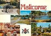 "72 Sarthe / CPSM FRANCE 72 ""Malicorne sur Sarthe"""