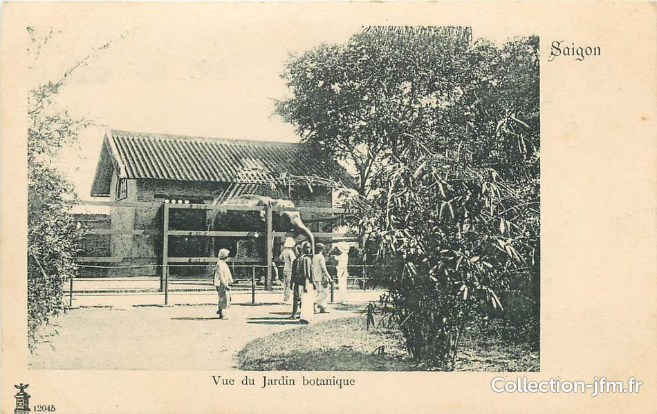 Cpa indochine saigon le jardin botanique asie viet for Jardin indochine