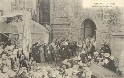 """/ CPA FRANCE 56 """"Carnac, bénédiction des bêtes à cornes """""""