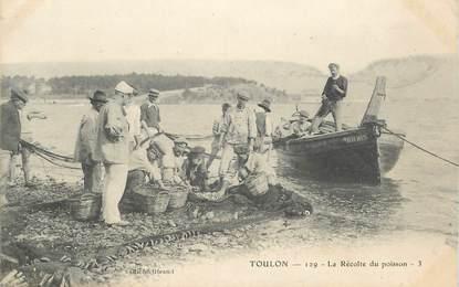 """CPA FRANCE 83 """"Toulon, la récolte du poisson"""""""