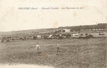 """/ CPA FRANCE 30 """"Vauvert, manade Combet, les taureaux au pré"""""""