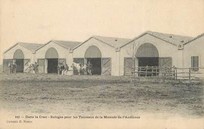 """/ CPA FRANCE 13 """"En Camargue, refuge pour les Taureaux de la Manade de l'Audience"""""""
