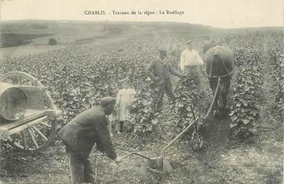 """CPA FRANCE 89 """"Chablis, travaux de la vigne, le ruellage"""""""