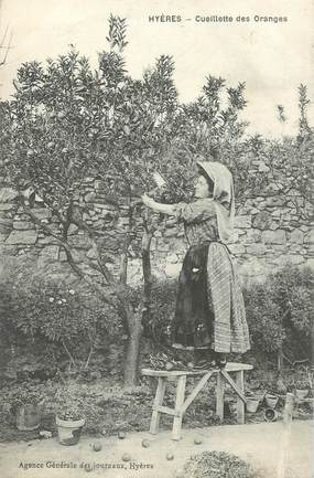 """CPA FRANCE 83  """"Hyères, la Cueillette des Oranges"""""""