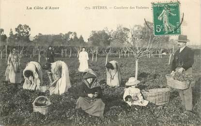 """CPA FRANCE 83  """"Hyères, la cueillette des violettes"""""""