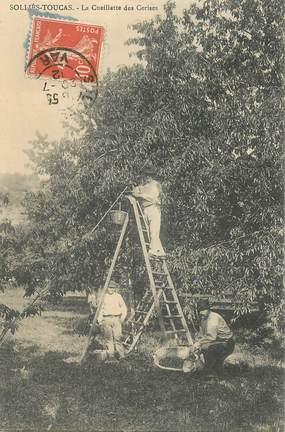"""CPA FRANCE 83 """"Solliès Toucas,  la cueillette des cerises"""""""
