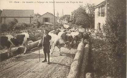 """/ CPA FRANCE 01 """"Gex, la montée à l'alpage du bétail"""""""