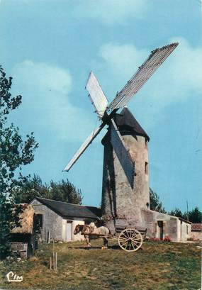 """/ CPSM FRANCE 85 """"Sallertaine"""" / MOULIN"""