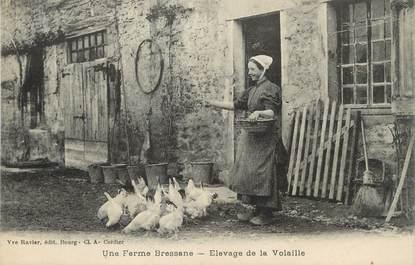 """/ CPA FRANCE 01 """"Une ferme Bressane, élevage de la volaille"""" / FOLKLORE"""