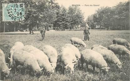 """CPA FRANCE 71 """"Mâcon, Parc du Stand"""""""
