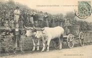 """71 SaÔne Et Loire CPA FRANCE 71 """"Vendanges en Maconnais, vendangeurs au travail"""" / ATTELAGE"""