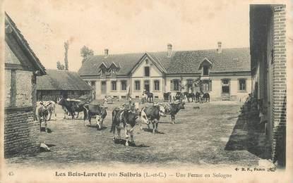 """CPA FRANCE 41 """"Les Bois Lurette près de Salbris, une ferme en Sologne"""""""