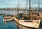 """29 Finistere / CPSM FRANCE 29 """"Camaret, bateaux de pêche devant le Sillon"""""""