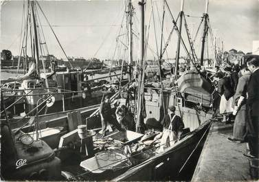 """/ CPSM FRANCE 29 """"Concarneau, retour de la pêche au thon"""""""