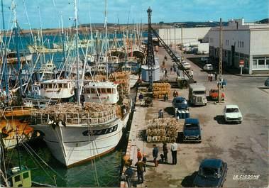 """/ CPSM FRANCE 29  """"Douarnenez, le port """""""
