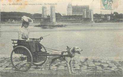 """CPA FRANCE 45 """"Sully sur Loire, voiture à chien"""""""