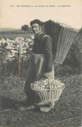 """CPA FRANCE 45 """"En Gatinais, la récolte du Safran"""""""