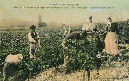"""CPA FRANCE 07  """"L'Ardèche pittoresque, la culture de la Vigne, les vendanges, la cueillette des Raisins"""""""