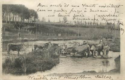 "/ CPA FRANCE 23 ""Les bords de la Creuse, vaches à l'abreuvoir"" / FOLKLORE"