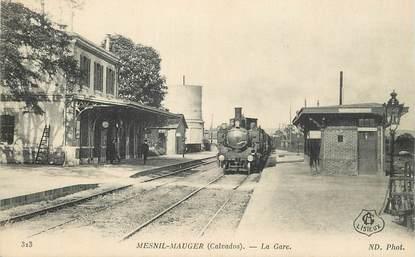 """CPA FRANCE 14 """"Mesnil  Mauger, la gare"""" / TRAIN"""