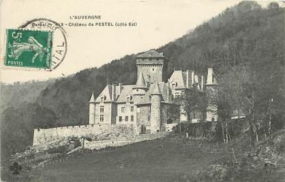 """CPA FRANCE 15 """"Chateau de Pestel, côté est"""""""