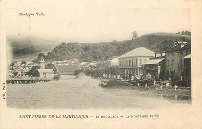 CPA MARTINIQUE / Saint Pierre, le mouillage, la montagne Pelée