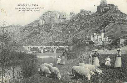 """.CPA FRANCE  48 """"Le Rozier, Sortie des Gorges, et Rocher de Capluc"""""""