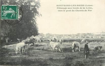 """.CPA FRANCE 42 """"Montrond les Bains, Pâturage aux bords de la Loire vers le pont de chemin de fer"""""""