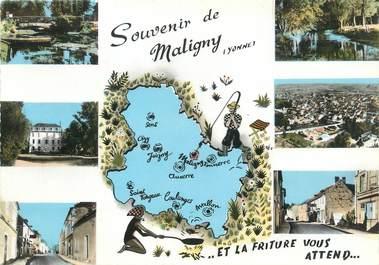 "/ CPSM FRANCE 89 ""Maligny """