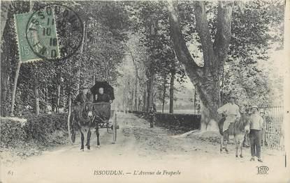 ".CPA FRANCE 36 ""Issoudun,  Avenue de Frapesle"""