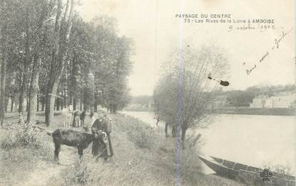 """.CPA FRANCE 37 """"Amboise, Les rives de la Loire"""""""