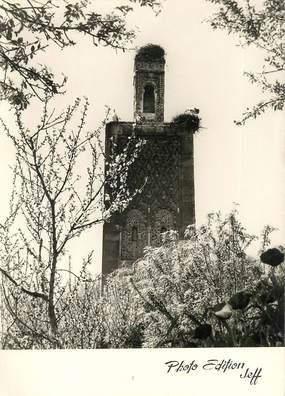 """CPSM MAROC """"Le Minaret du Chellah"""""""