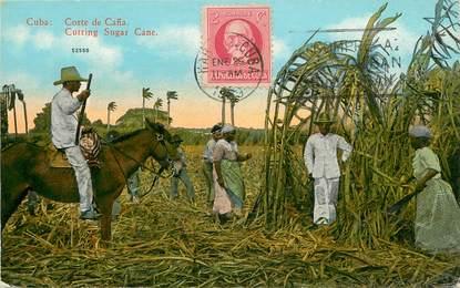 """CPA CUBA """"Coupe de la Canne à sucre"""""""