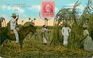 """Antille CPA CUBA """"Coupe de la Canne à sucre"""""""