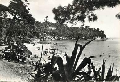 """CPSM FRANCE 83 """"Le Canadel, la plage"""""""